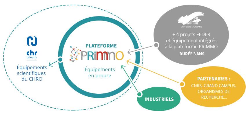 Schéma acteurs et positionnement PRIMMO